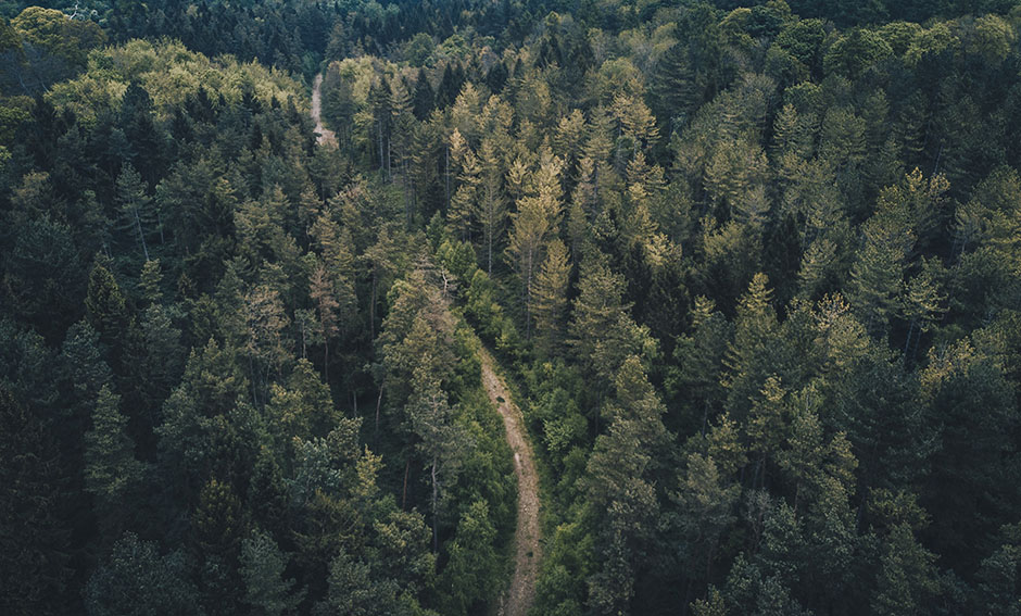 Rare Road